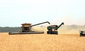 2012-august-farm-565